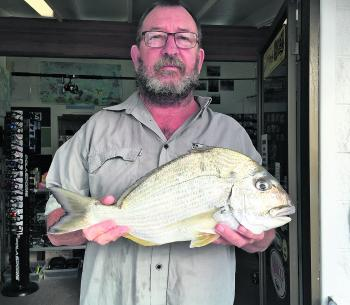 A stonker bream caught in the Iluka area!
