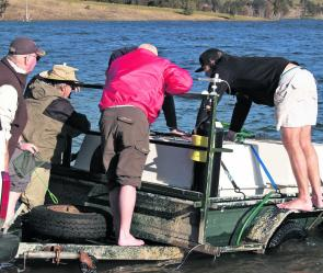 DPI Fisheries has released 50,000 bass at Lake St Clair and another 50,000 at Glenbawn, with more to come this month.