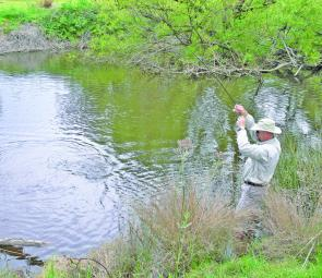The author struggles to cope with a marauding Fish River rainbow trout, a common and welcome sight over the past season.