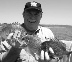 A trio of bream caught by the author in Lake Illawarra.