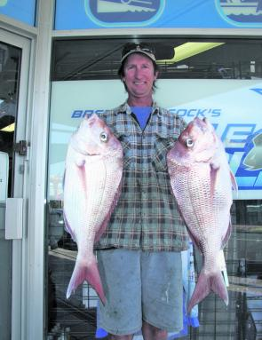 Over Winter plenty of quality snapper move onto the shallower reefs where you can target them on bait and soft plastics.