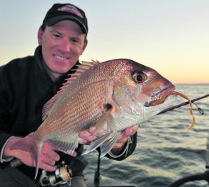 Those searching the shallows for pinkie snapper have been successful at first and last light.