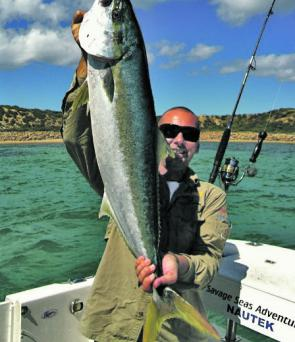 Jay Furniss caught this fantastic kingy off the Mornington Peninsula.