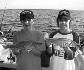 There has been a late run of whiting in both bays. These ones were caught by Jake and Dylan Ryan in Western Port.