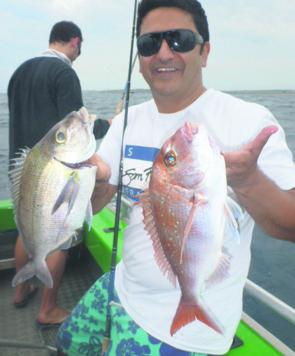 Snapper and morwong are the main bottom species available at the moment.
