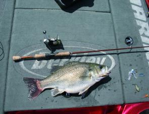 Super-fat bass can be caught on some of the lakes during winter. Notice the selection of lures on the deck, mix it up until you find success.