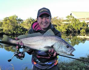 Bream and flathead anglers can expect some awesome by-catch such as small mulloway like this one.