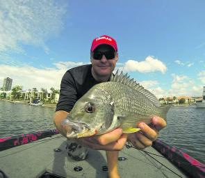 Bream guru Scott Butler with a fine Gold Coast canal bream. We are already seeing more fish like this in the canals!