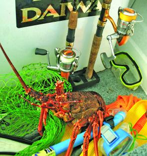 Southern rock lobster, commonly known as crayfish, are a popular target during December.