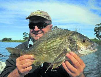 Bream are quite happy to take a live yabby or peeled prawn bait. A running sinker is the best choice for rigging.