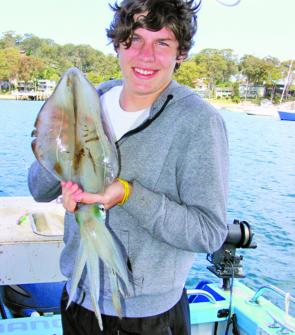Set on a downrigger, large squid like this are prime baits for big Pittwater kingfish.