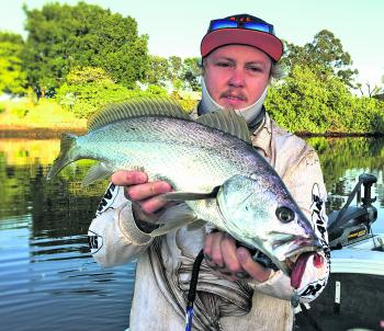 Steele Petrovic with a nice mulloway caught flicking rock walls in the Nerang River.