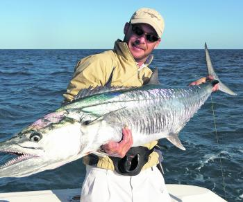 The author ha gotten stuck into some great Spanish mackerel lately.