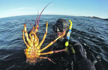 Lobsters like this are a good reason to get excited about winter fishing.