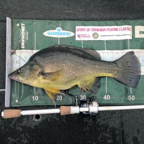 Native fish are relatively slow growing, golden perch take around three years to reach just 30cm. Photo courtesy of Andy McCarthy.