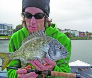Hardbodied lure presentations are an extremely effective, and satisfying, method of targeting Patterson River bream.