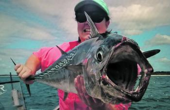 The business end of a Hervey Bay mac tuna.