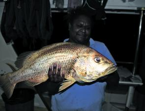 Big golden snapper caught with fresh whole squid in 30m of water on the Barrier Reef.