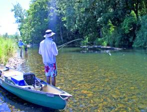 Dale Graham out of the canoe and fishing a likely looking hole on the Bellinger.