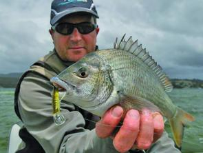 Jason Nichols with a very nice St Helens Bream