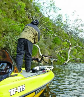 Nick Glenn tempts fate as he casts into some thick snags on the Glenelg River