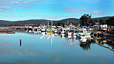 The wharf area and subsequent marina upgrades are going along way in making Triabunna a hive for marine and boating activities.