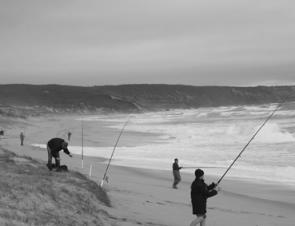 Most surf fishers to Gunamatta wore waders though a few brave anglers wore shorts – keen!