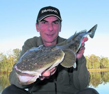 It's a great time of year for flathead. The author picked up this Tuggerah Lakes model while chasing bream with small vibes.