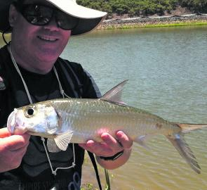 The author's old man, Andrew, holds up a better than average Indo-Pacific tarpon tail-walked about 10m sideways after smashing a small suspending hardbody in under 1m of water.