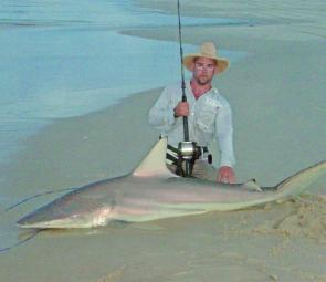 This shark was caught whilst fishing in the surf – hopefully a sign of things to come.
