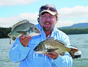 The author with a couple of solid bream caught on soft plastics in Tuross Lake.