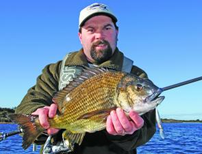 The author with a cracking Georges Bay bream taken on a hardbodied lure.