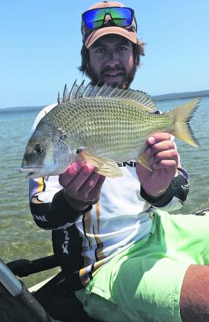 Yellow fin bream are turning up in big numbers in the Gippy Lakes area.