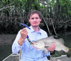 Simon Frazer horsed this lovely barra from the mangroves in the background on a white X-Rap.