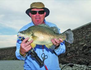 Yellowbelly on the dam wall – it has been fished hard but might still be worth a shot.