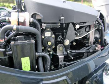 What an engine should look like: no leaks in sight and no excessive oil or grease.