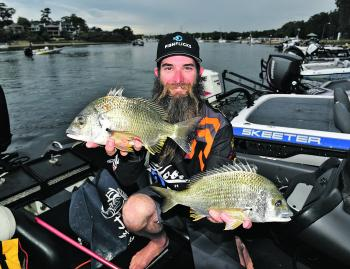 Kris Hickson with a brace of bream from the Hawkesbury that helped him secure second place.
