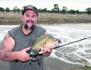 A top golden perch caught in the old Lake Mokoan outlet channel on a 3/8oz Mudguts spinnerbait.