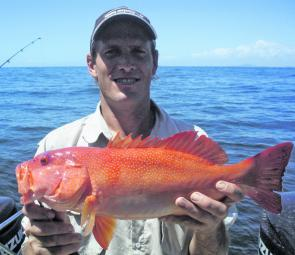 Sunshine Reef is the place to be if you want coral trout.