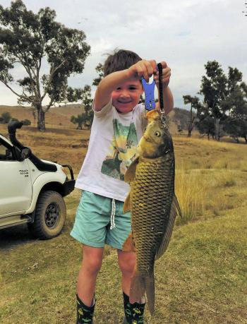 Young angler Will Heritage with a hefty European carp has an even bigger target to aim for in the future with the news of a 15.5kg carp caught in Lake Tuggeranong.