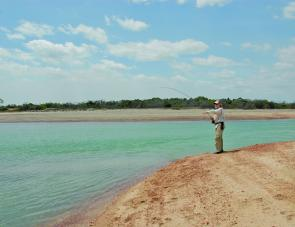 Casting a fly into a creek mouth at Weipa virtually guarantees a hook up within seconds.