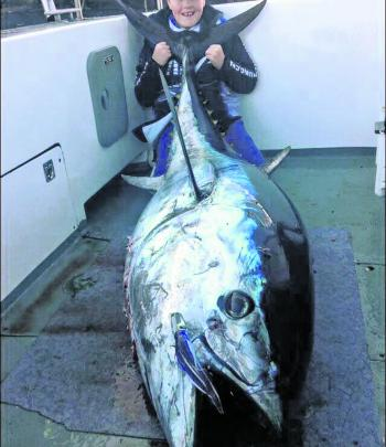 Some super keen fishos kept keen and found bluefin tuna at St Helens.