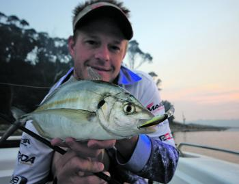 Silver trevally might be more of a by-catch, but they are a lot of fun on light tackle.