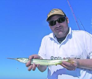Matt Reid shows off over 50cm of garfish during at red-hot session at Mcloughlins. He caught it on an unweighted cube of tailor fillet.