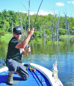 Fishing spinnerbaits around the structure in Maroon has accounted for reasonable numbers of bass. These reaction baits are likely to slow down but the action on soft plastics and jerkbaits will pick up.