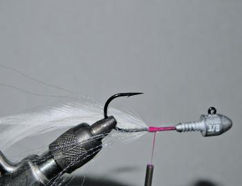 At this same position, attach 3 to 5 saddle hackles to the far side of the jig with a series of thread wraps. The natural curvature of the hackle should be facing inwards. The middle of the hackle should roughly coincide with the bend of the hook.