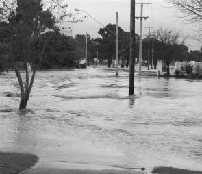 The flooded Traralgon Creek at the end of Franklin Street, Traralgon.