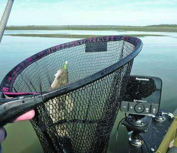 The author prefers a short handled net (G) that he can tuck beside his seat or store in a rear flush mount rod holder without it acting as a sail.