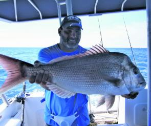 Frank Ditullio had the patience to target, plan and capture this great snapper.