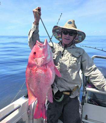 This sunrise coloured nannygai was caught off the reefs last month.